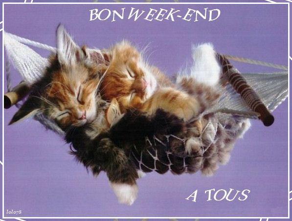 Tres bon week end a tous - Bon week end a tous ...